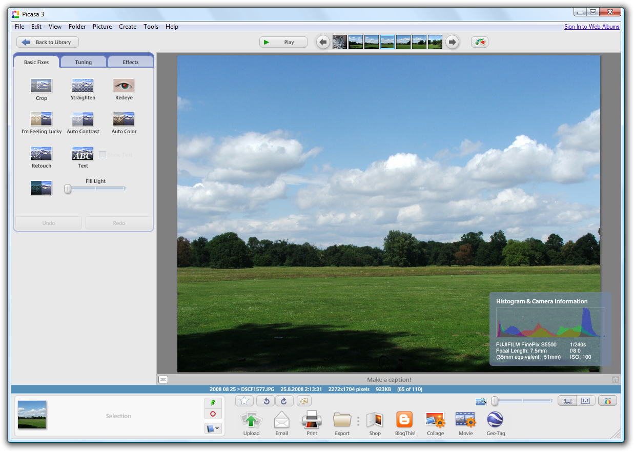 Picasa 3 Great Linux photo software